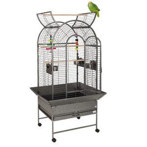Parrot & Parakeet Cages