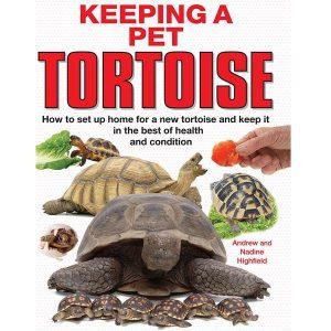 Tortoise Books